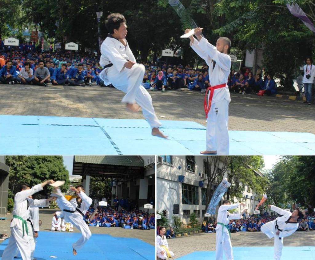 Atraksi Taekwondo Mahasiswa Universitas Esa Unggul